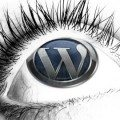 WordPress SEO - Be Seen