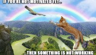 If you are not motivated yet...